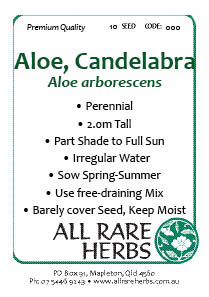 Aloe Candelabra seed