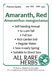 Amaranth Red seed