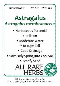 Astragalus seed