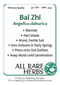 BaiZhi seed