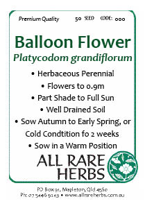 Balloon Flower seed