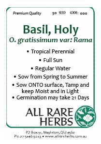 Basil Holy seed