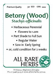 Betony Wood