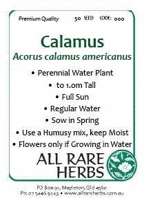 Calamus