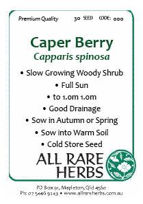 Caper Berry