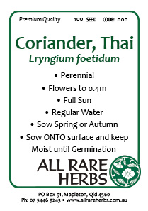 Coriander Thai