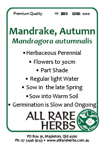 Mandrake Autumn