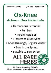 Ox-Knee