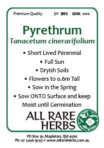 Pyrethrum