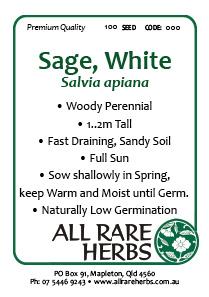 Sage White