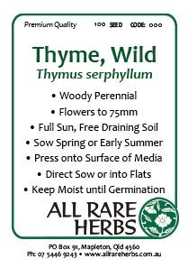 Thyme Wild