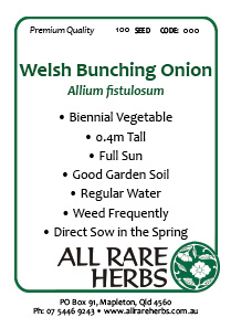 Welsh Bunching Onion