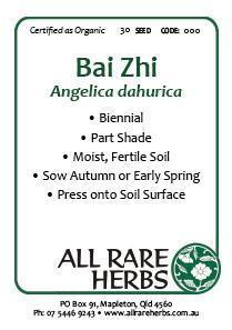 Bai Zhi, seed