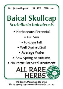 Skullcap, Baical, seed