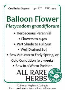 Balloon Flower, seed