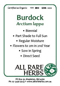 Burdock, seed
