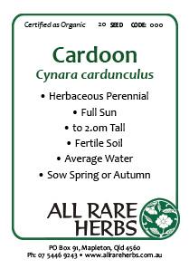 Cardoon, seed
