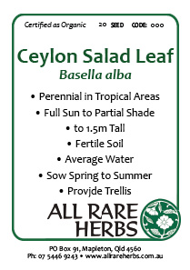 Ceylon Salad Leaf, Red, seed