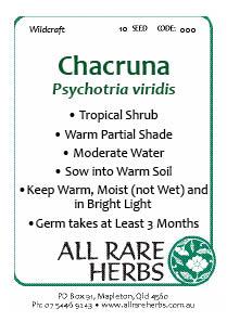 Chacruna, seed