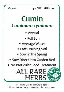 Cumin, seed