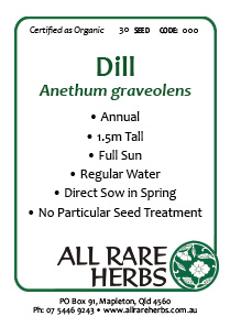 Dill, seed