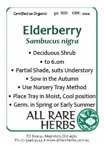 Elderberry, Black  seed