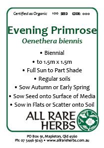Evening Primrose, seed