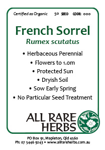 Sorrel, French  seed