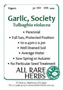 Society Garlic, seed