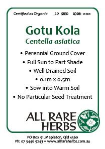Gotu Kola seed