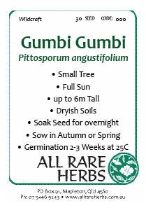 Gumbi Gumbi, seed