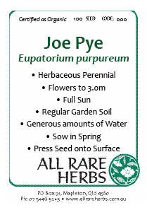 Joe Pye, seed