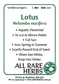 Lotus, seed