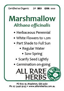 Marshmallow, seed