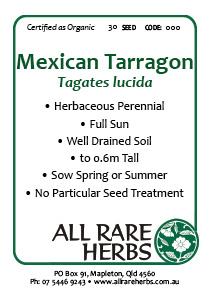 Tarragon, Mexican  seed