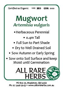 Mugwort, seed
