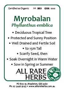 Myrobalan, seed