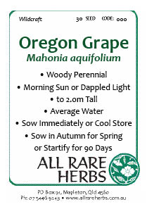 Oregon Grape, seed