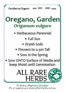 Oregano, Garden, seed