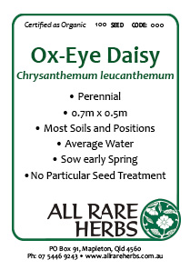 Ox Eye Daisy, seed