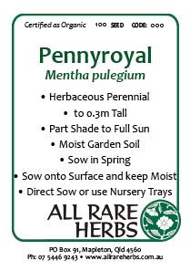 Pennyroyal, seed