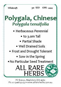 Polygala, Chinese  seed