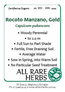 Chili, Rocoto Manzano Gold  seed