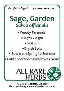 Sage, Garden  seed