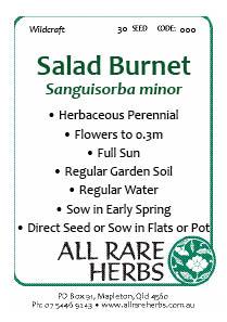 Salad Burnet, seed