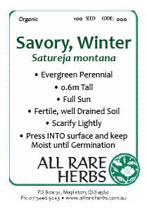 Savory, Winter  seed