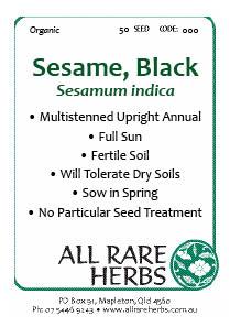 Sesame, Black  seed