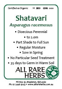 Shatavari, seed