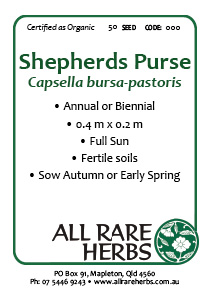 Shepherds Purse, seed