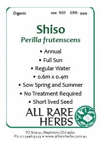 Shiso, seed